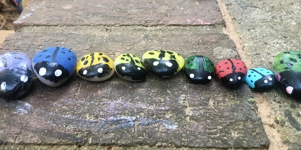 1 Ladybugs