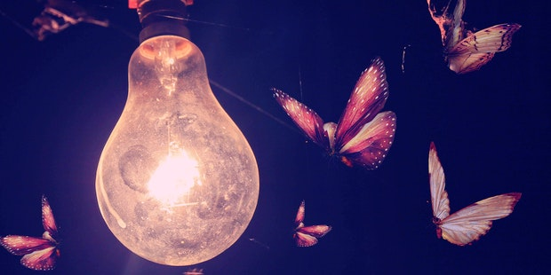 Insects Lightbulb
