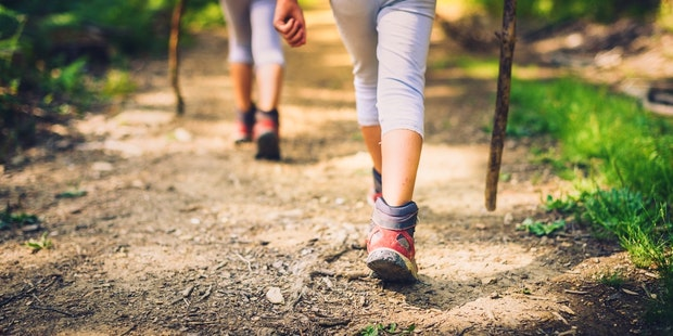 Kids nature hike trail
