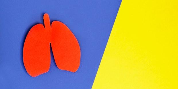 Lung cutout