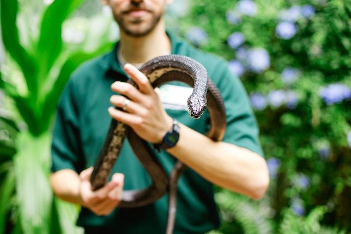 1 Jacob Stark and rat snake at DPN 1