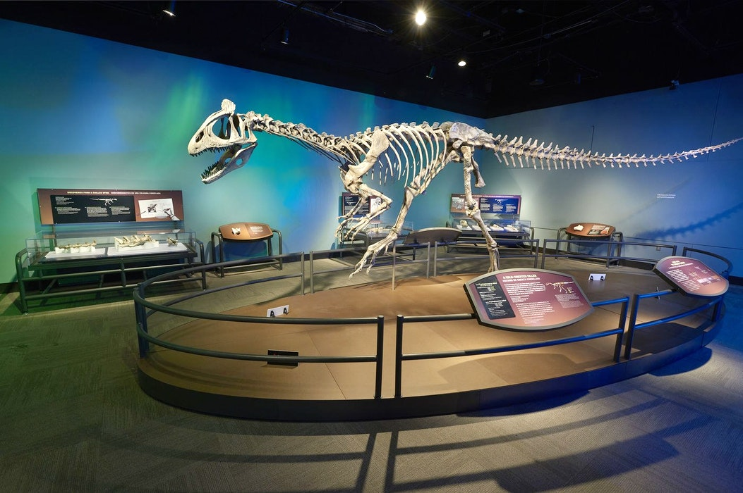 Antarctic-Dinosaurs-2