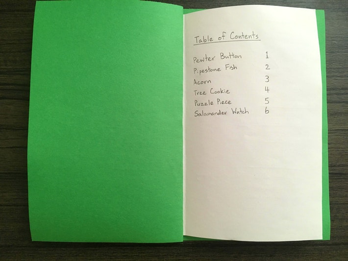 DIY Field Guide 4 Table of Contents