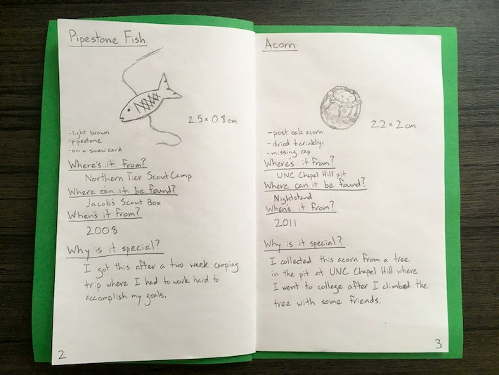 DIY Field Guide 5 Pages