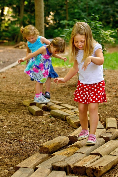 Dpn Fort Wild Girls On Logs