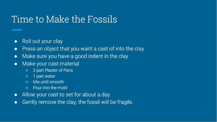 Fossil Instructions