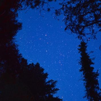 Lyra Constellation